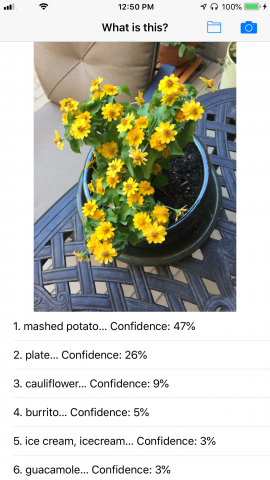 graphic showing flowers and text describing it as mashed potatoes