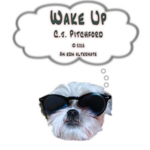 """A picture of a dog wearing sunglasses thinks """"Wake Up"""""""