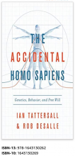 Image of book cover of The Accidental Homo Sapiens