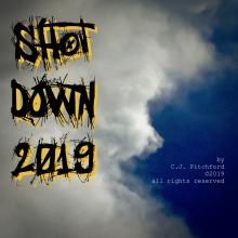 "image for cover of instrumental song ""Shot Down 2019"""